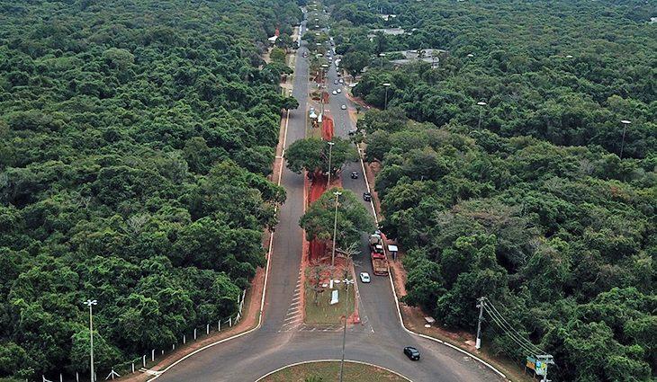 Com obra em andamento, revitalização do Parque dos Poderes terá foco na preservação da vegetação nativa - Crédito: Chico Ribeiro