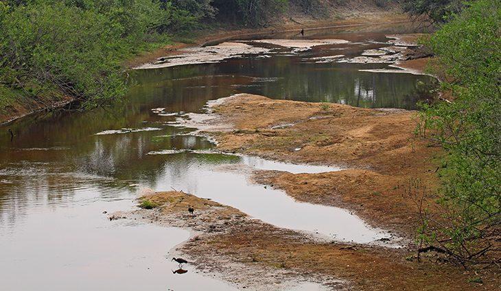 Com mais baixa estação chuvosa em 10 anos, Pantanal já tem 80% das propriedades afetadas - Crédito: Chico Ribeiro