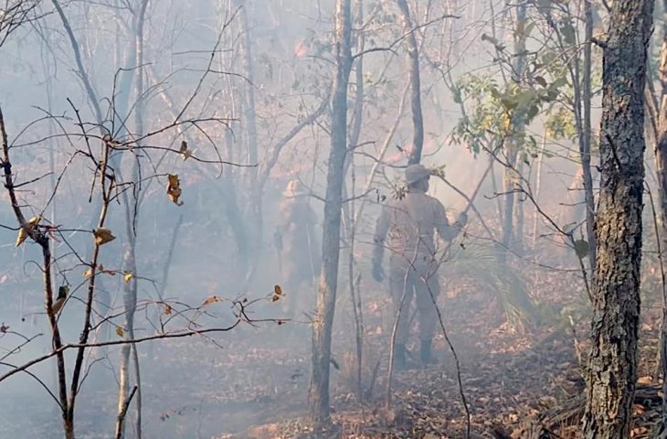 Corpo de Bombeiros monitora incêndios com imagens de satélite e amplia fiscalização em áreas de focos -