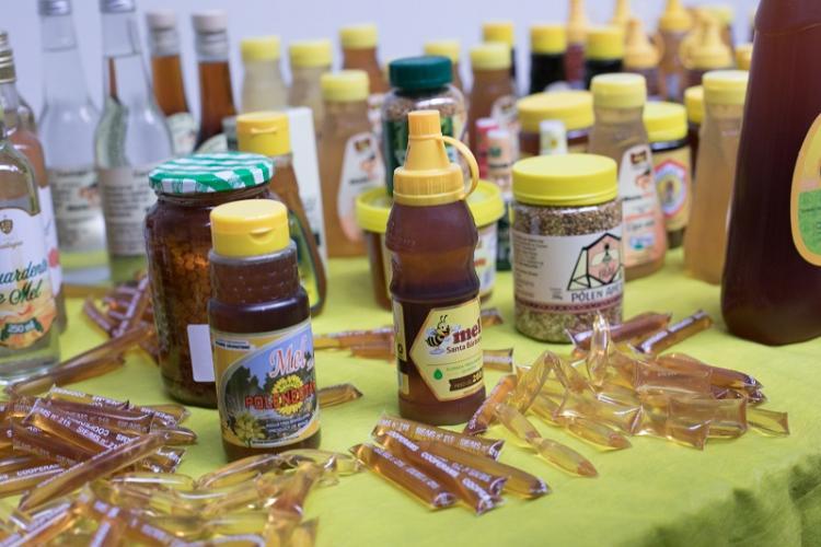 Selo Arte para produtos de abelhas e derivados permitirá expansão da apicultura em Mato Grosso do Sul - Crédito: Famasul