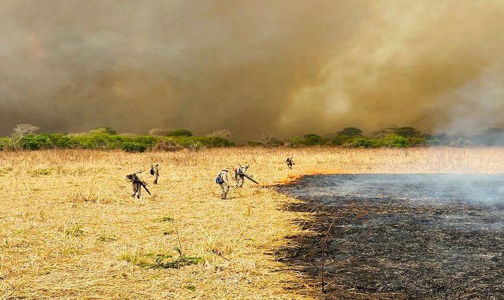 Combate aos incêndios no Pantanal mobiliza 510 homens e seis aeronaves - Crédito: Divulgação