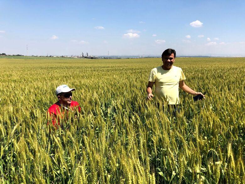 Conforme o presidente do Sindicato Rural, o cenário permanece positivo para o agronegócio - Crédito: Divulgação