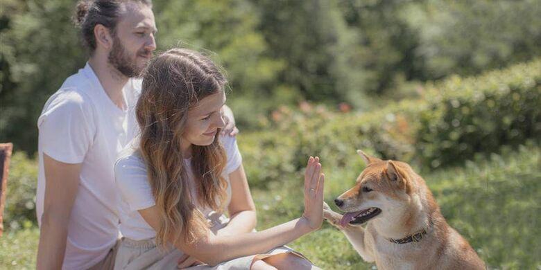 A importância do Pet na vida da família -
