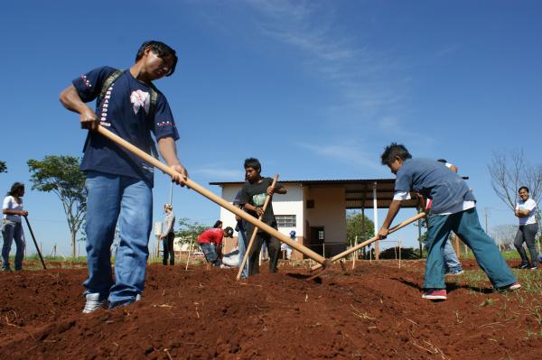 Estudantes indígenas  aprendem a cultivar o próprio alimento através de um projeto Foto: Hédio Fazan    -