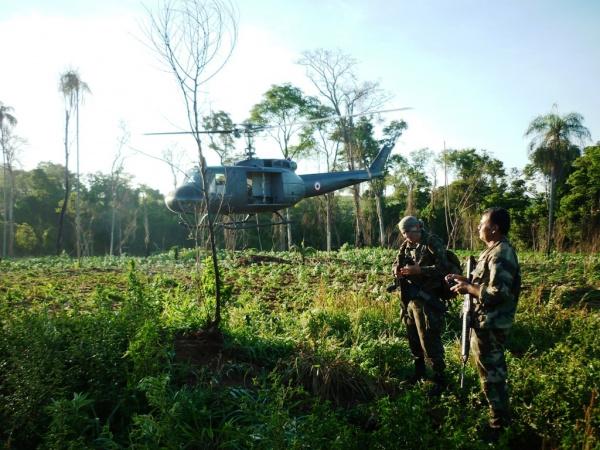 Operação conjunta teve o auxílio de um helicóptero das Forças Armadas Paraguaia Foto: Senad/Divulgação  -
