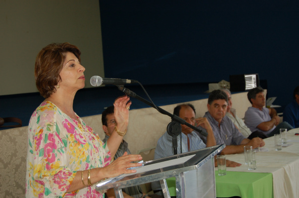 Reunião do PSDB decidiu que partido será soberano para lançar candidatura ou fazer coligação Foto: Divulgação   -