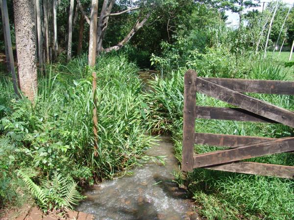 Córrego Laranja Doce é tema de poema de estudantes de escolas de Dourados  - Crédito: Foto: Hedio Fazan