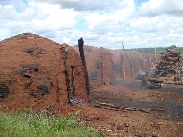 Três carvoarias foram fechadas e multadas pela PM Foto: Divulgação -