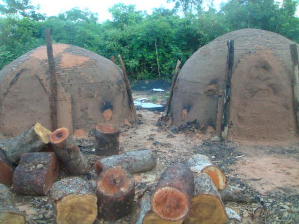 Carvoaria foi fechada e assentado multado em R$ 8,5 mil  - Crédito: Foto: PMA/Divulgação