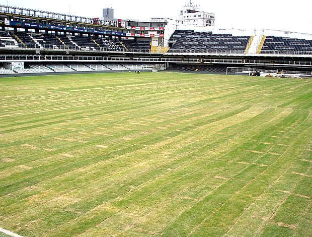 Nova grama está plantada. Agora começa trabalho de adubação - Crédito: Foto: Divulgação
