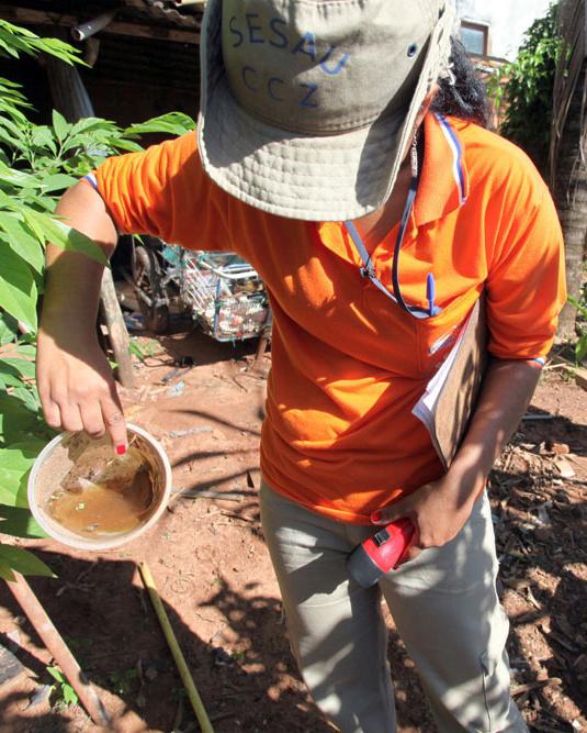 Campo Grande é um dos municípios estrategicamente monitorados para controle da dengue - Crédito: Foto: David Majella