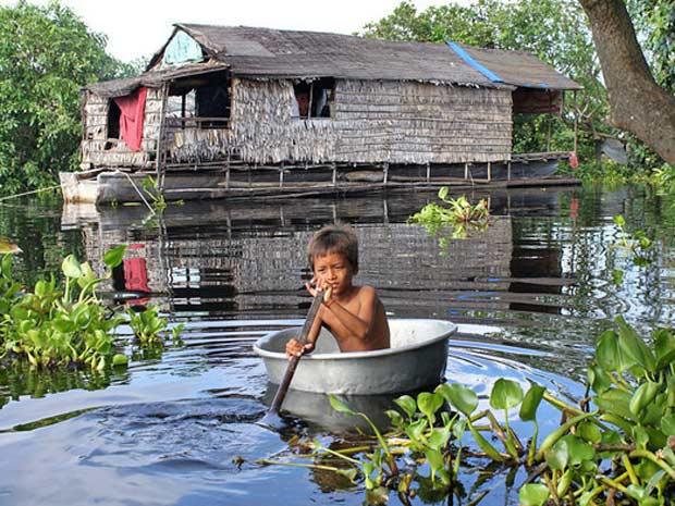 Segundo ONG, floresta mais ameaçada, na Ásia, teve 95% de sua mata destruída. - Crédito: Foto: CI/ Divulgação