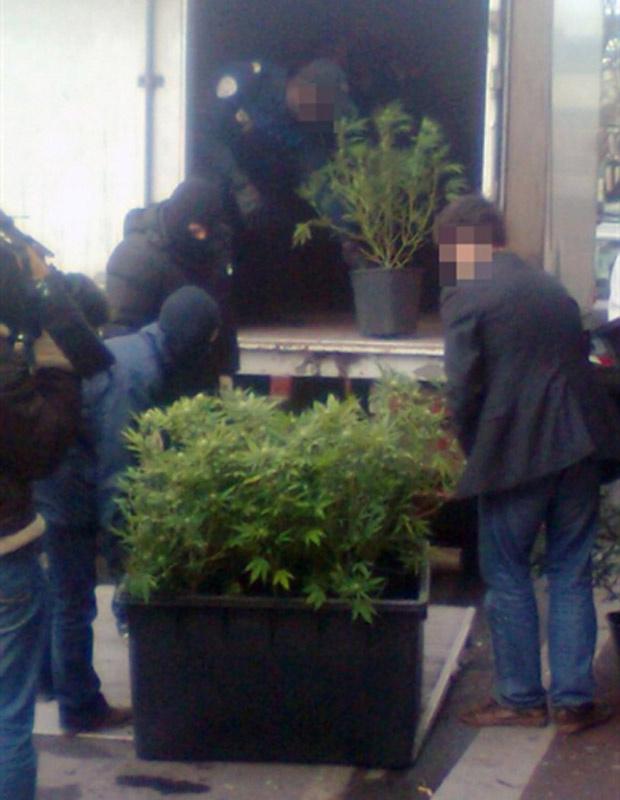 Foto feita com telefone celular mostra policiais transportando pés de maconha descobertos em La Courneuve, subúrbio de Paris, nesta terça-feira - Crédito: Foto: AP