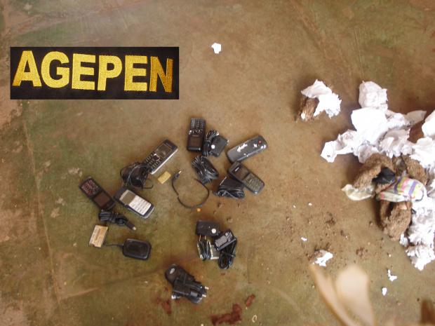 Aparelhos celulares estavam escondidos numa carga de esterco que entrou na Phac - Crédito: Foto: Sidnei L. Bronka