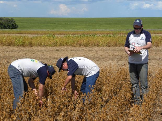 Equipe 2 do Rally da Safra em lavoura de soja em Primavera do Leste - Crédito: Foto: Divulgafção