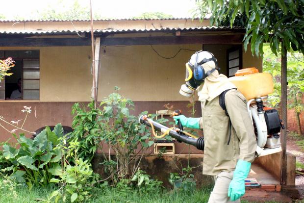 """Agentes de saúde iniciam """"devassa"""" contra a dengue em bairros de Dourados - Crédito: Foto: Hédio Fa-zan/PROGRESSO"""