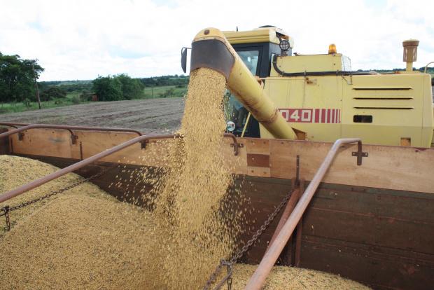 Máquinas trabalham aceleradas para aproveitar o tempo firme e colher os grãos - Crédito: Foto: Hédio Fazan/PROGRESSO