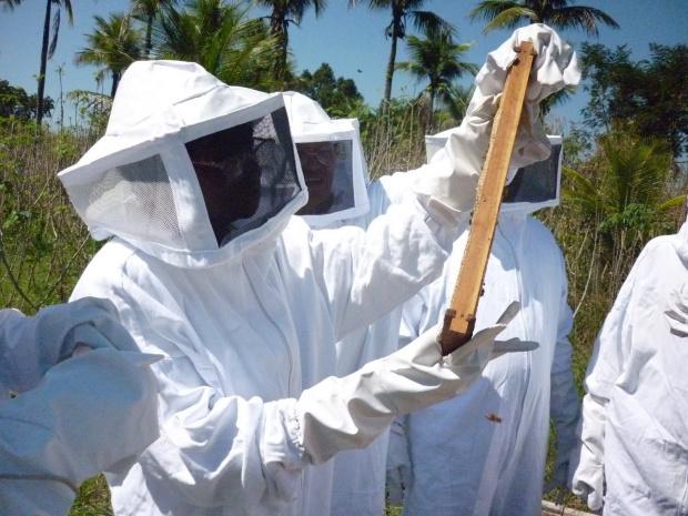 Sindicato Rural de Dourados oferece curso de apicultura nos meses de fevereiro e março - Crédito: Foto: Divulgação