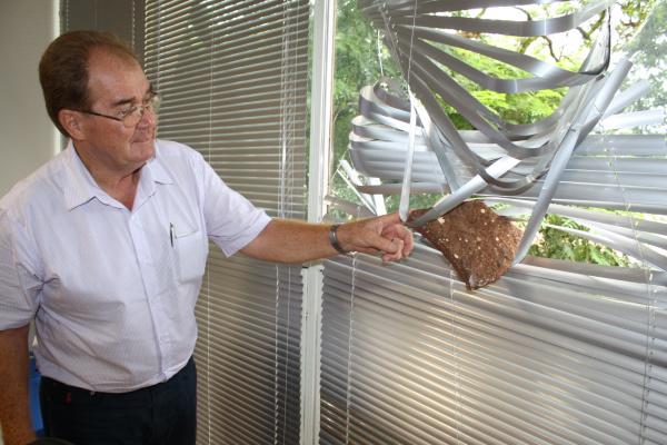 O vereador Idenor Machado mostra a pedra que ficou presa na persiana de janela de vidro Foto: Hédio fazan      -