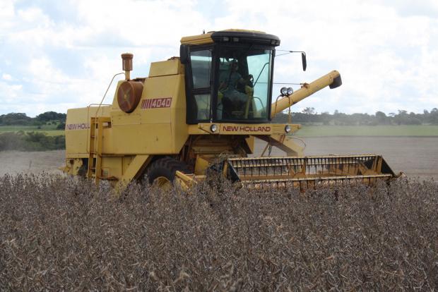 Produtores aproveitam os dias de tempo firme para adiantar a colheita da soja - Crédito: Foto: Hédio Fazan/PROGRESSO