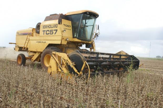 Produtores correm contra o tempo para colher a soja e plantar o milho em seguida - Crédito: Foto: Hédio Fazan/PROGRESSO