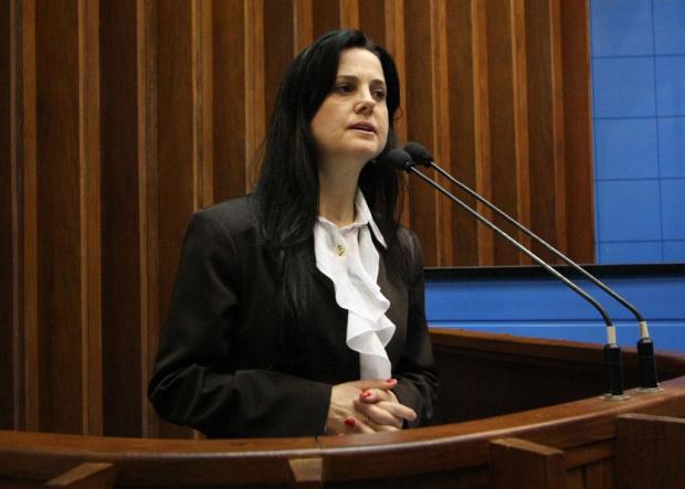 Deputada propõe discussão da questão da saúde pública - Crédito: Foto : Giuliano Lopes