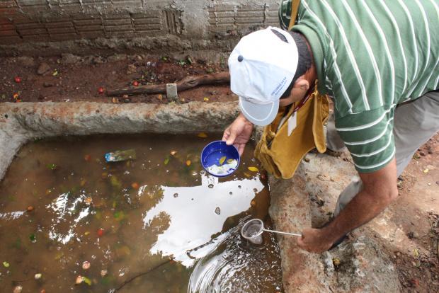 Agentes monitoram residências para reduzir os focos do mosquito da dengue - Crédito: Foto: Hédio Fazan/PROGRESSO