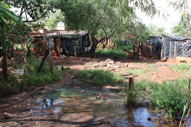 Famílias vivem na miséria no assentamento Brasil 500, em Dourados - Crédito: Foto : Hedio Fazan/PROGRESSO