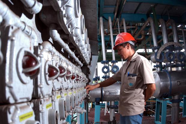 Exportações devem crescer em Mato Grosso do Sul - Crédito: Foto : Divulgação