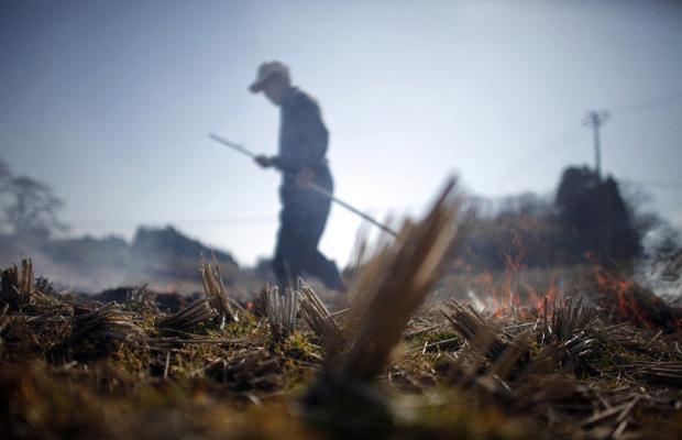 Morador queima campo de arroz para preparar plantação próximo à cidade da Fukushima nesta terça-feira - Crédito: Foto: AP