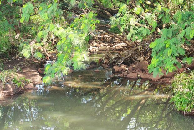 Córrego Rego D'água é o mais poluído de Dourados com resíduos de esgoto - Crédito: Foto: Hédio Fazan/PROGRESSO