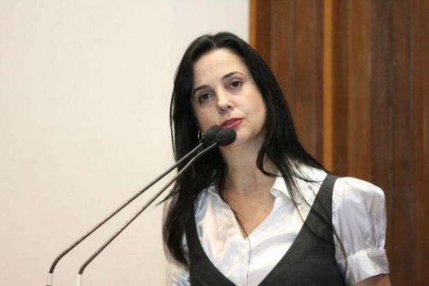 Audiência será presidida pela deputada estadual Mara Caseiro, autora da proposta - Crédito: Foto : Divulgação