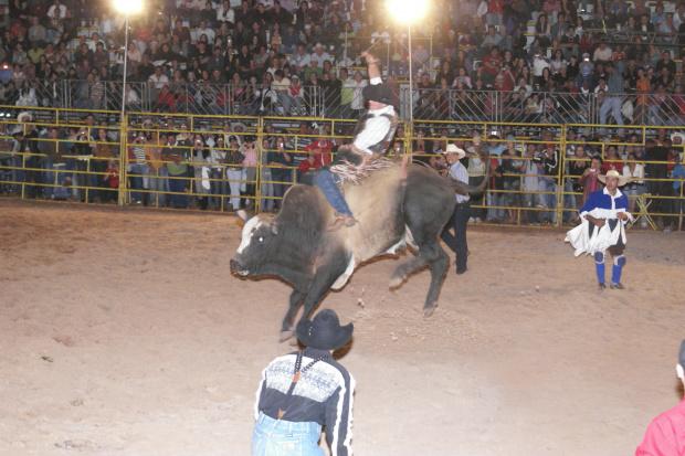 Rodeios agitam Expoagro este domingo na 47ª Expoagro -