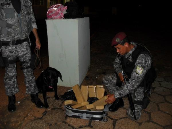 Cão farejador já ajudou a solucionar vários casos de tráfico na fronteira - Crédito: Foto: Divulgação