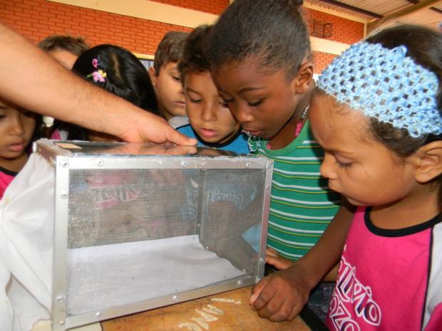 Ações sensibilizam comunidade para o combate à dengue - Crédito: Foto : Divulgação