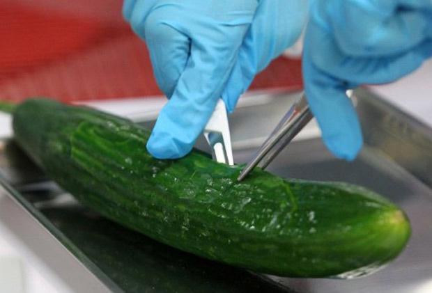 Sobe para 12 o número de mortos por conta de contaminação com a bactéria Escherichia coli no norte da Alemanha, informaram autoridades nesta segunda-feira - Crédito: Foto: Bernd Wuestneck / AFP Photo