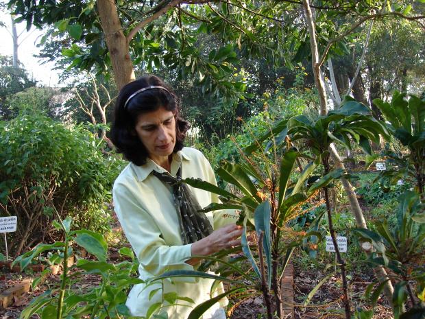 Visitantes poderão conhecer o horto da UFGD com a professora Maria do Carmo - Crédito: Foto: Divulgação