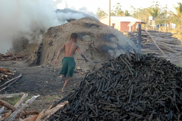 A necessidade do combate ganhou força quando foram identificados crianças trabalhando em carvoarias, no interior do estado.  Foto: Agência Brasil -