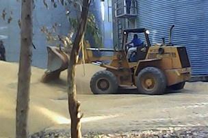 Máquinas abriram buracos para escoar a soja que soterrou a vítima. - Crédito: Foto: Alan Falcão