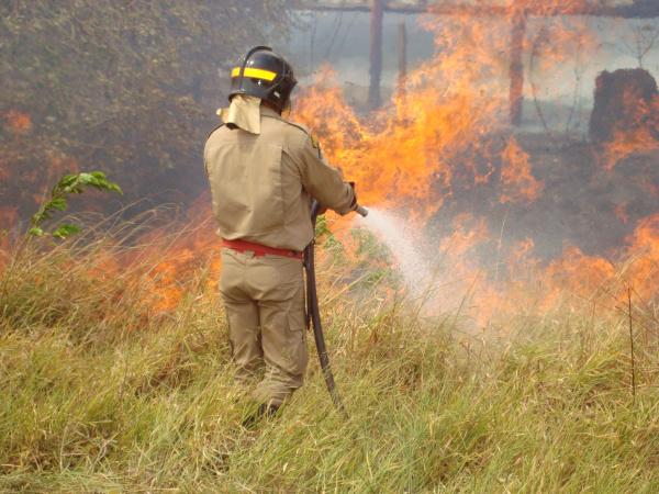 Bombeiros de Dourados vão fazer operação para combater as queimadas urbanas no Estado - Crédito: Foto : Divulgação