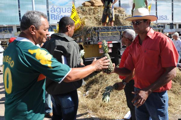 Trabalhadores da Embrapa distribuem abacaxi em Brasília - Crédito: Foto : Wilson Dias – Abr
