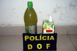 Droga estava em ônibus com destino a Campo Grande - Crédito: Foto: Divulgação/DOF
