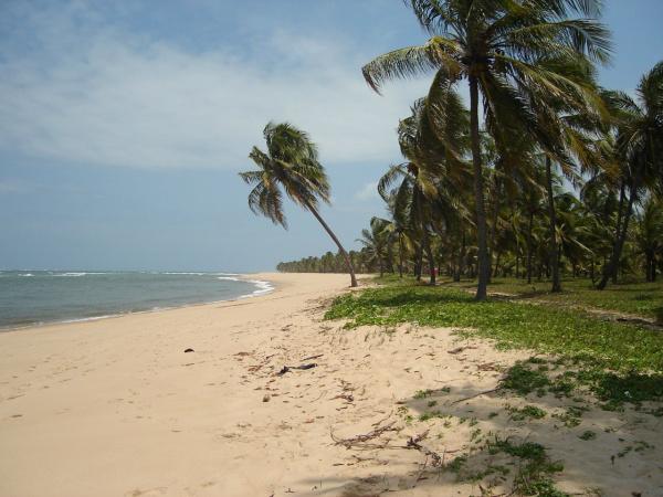 Praias desertas existentes em alagoas também oferecem gastronomia de qualidade. - Crédito: Foto: Divulgação