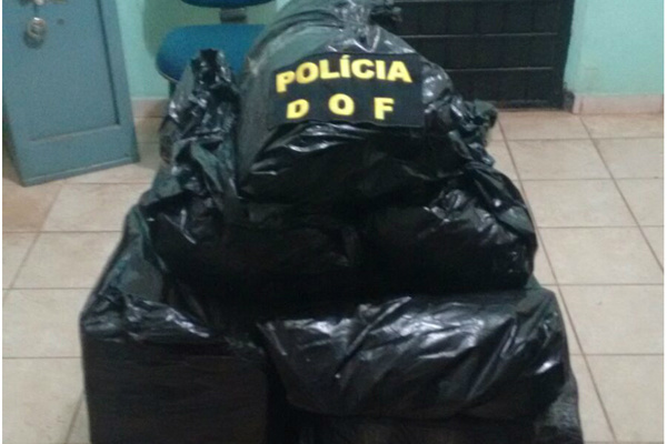 Droga estava na carroceria de um caminhão que seguia para SC. - Crédito: Foto: Divulgação/DOF