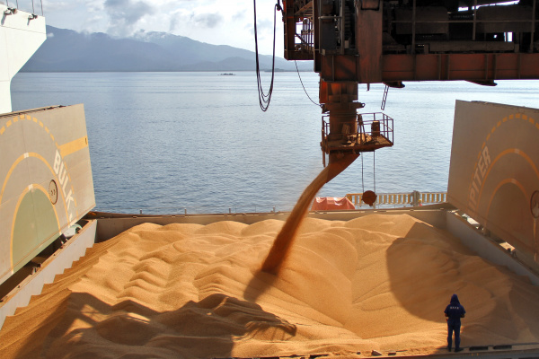 Complexo soja teve desempenho positivo. Os embarques do setor aumentaram 68% em novembro. - Crédito: Foto: Reprodução