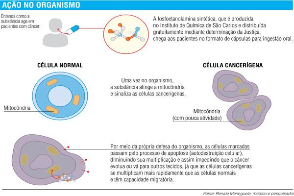 Cura do câncer: Deputada pede que MS fabrique 'remédio' -