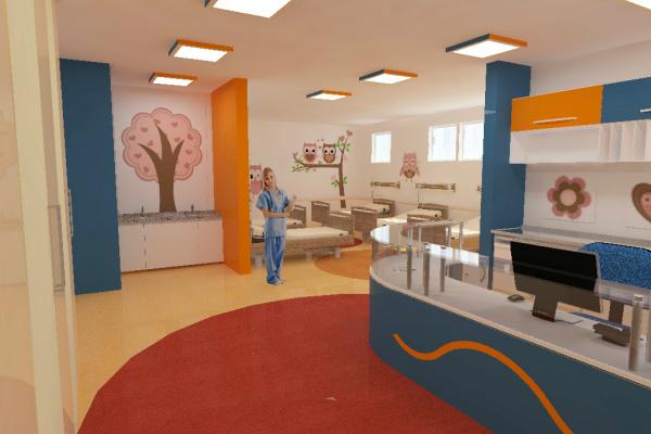 O projeto, que seguirá para análise e aprovação foi desenvolvido pelo escritório da Organização das Nações Unidas para projetos na área hospitalar - Crédito: Foto: