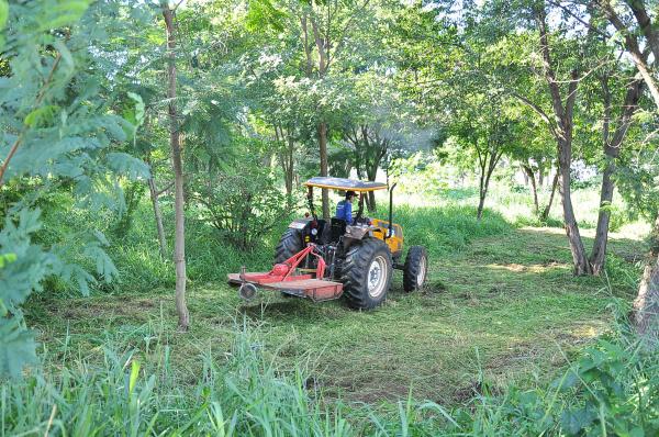 Prefeitura vai intensificar a fiscalização de terrenos baldios. - Crédito: Foto: Assecom