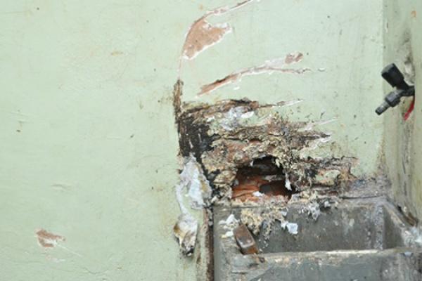 Princípio de buraco e grade serrada foram achados pelos policiais. - Crédito: Foto: Fatima News