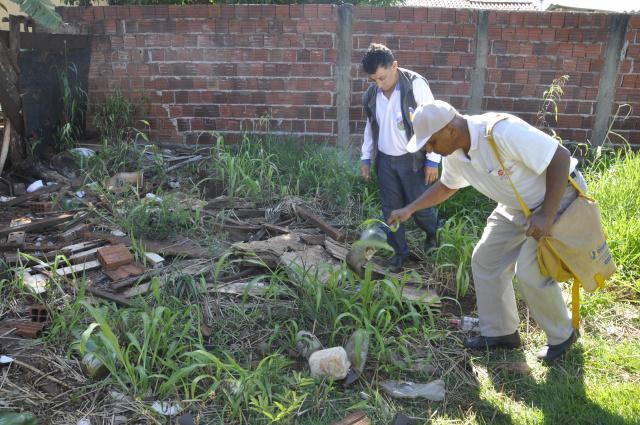 O mutirão de  combate ao mosquito foi realizado ontem na região do Jardim Santa Brigida. - Crédito: Foto: Hedio Fazan